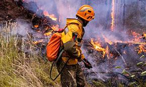 366 лесных пожаров потушено в России за неделю