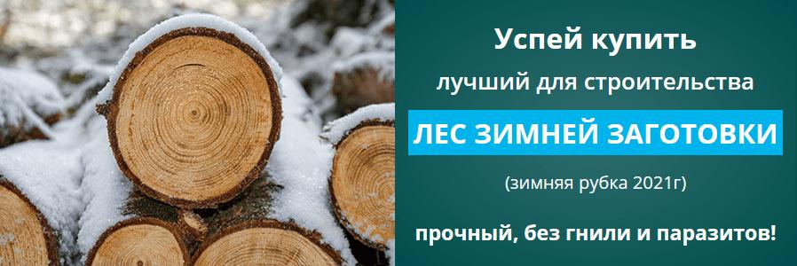 zym_les_1