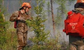 Более 380 лесных пожаров потушили за неделю в России